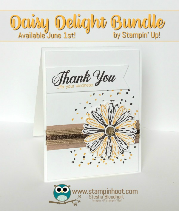 Sneak Peek, Stampin' Up! Daisy Delight Bundle, Daisy Delight Photopolymer Stamp Set, Daisy Punch, New, Stampin' Hoot!, Stesha Bloodhart