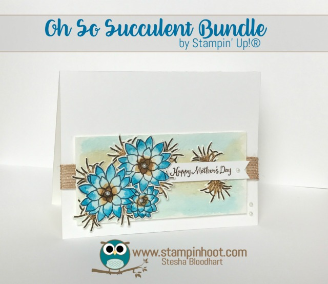 Oh So Succulent Bundle is Oh So Going Away….