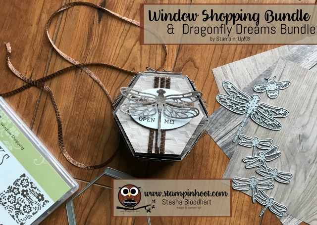 Stampin' Up! Window Shopping Bundle Meets Dragonfly Dreams Bundle Stesha Bloodhart, Stampin' Hoot! #stampinup #bundleandsave #stampinhoot