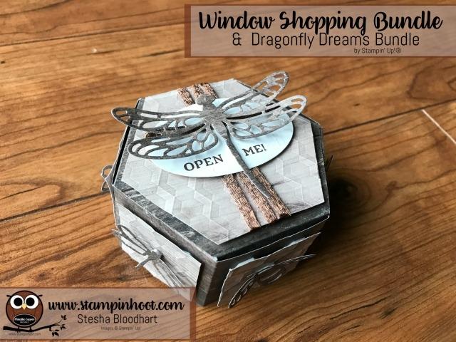 Stampin' Up! Window Shopping Bundle Meets Dragonfly Dreams Bundle Stesha Bloodhart, Stampin' Hoot! #stampinup #bundleandsave #stampinhoot