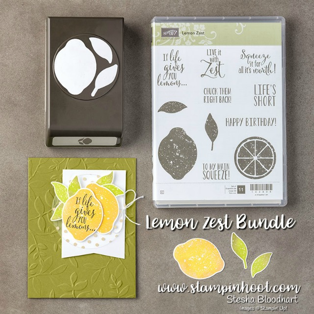 Stampin' Up! Lemon Zest Bundle 145360 Available in Both Clear and Wood Mount. Purchase at Stampin' Hoot! Stesha Bloodhart #lemonzest #bundles #stampinup