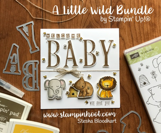 A Baby Card with A Little Wild Bundle