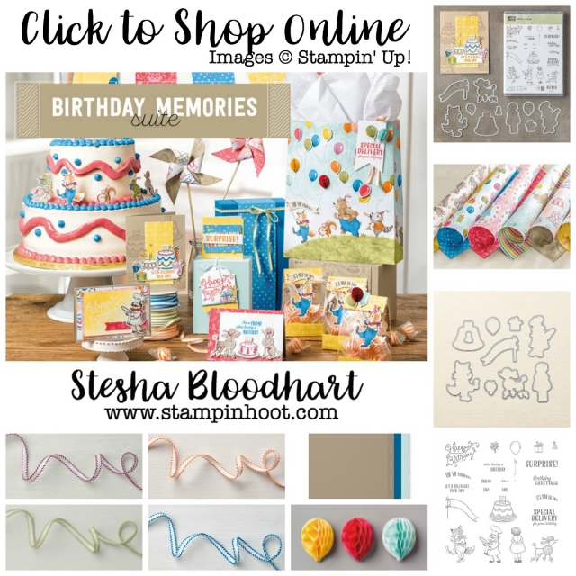 Birthday Memories Suite of Product by Stampin' Up! Shop Online with Stesha Bloodhart at Stampin' Hoot! #stampinup #bundles #dies #framelits #DSP #ribbon #photopolymerstamps #clearstamps #acrylicblocks #honeycombballoons #cardstock #birthdaymemories #birthdayfriends #stampinhoot #steshabloodhart