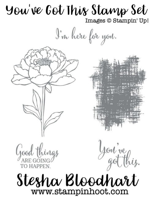 You've Got This Stamp Set by Stampin' Up! Purchase from my Online Store - Stampin' Hoot! Stesha Bloodhart #stampinup #rubberstamps #flowers #wordsofencouragement