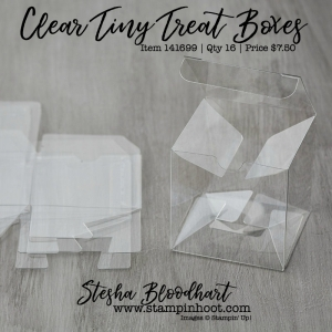 Clear Tiny Treat Boxes by Stampin' Up! Item 141699 Order Online via Stampin' Hoot, Stesha Bloodhart #tinytreatbox #stampinup #stampinhoot