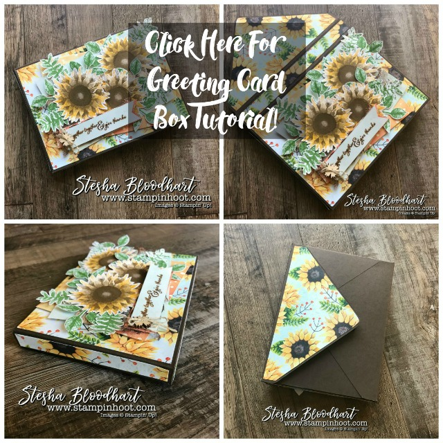 Painted Harvest Greeting Card Gift Box Tutorial, Find at Stampin' Hoot! Stesha Bloodhart #giftbox #stampinup #paintedharvest #steshabloodhart #3dthursday #sunflowers #2017holidaycatalog