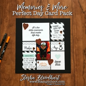 Perfect Day Card Packs make for Quick and Easy Scrapbook Pages. Visit Stampin' Hoot Scrapbook Sunday Feature for Details. Stesha Bloodhart #pocketsandpages #memoriesandmore #scrapbooklayout #scrapbooking #perfectday #12by12