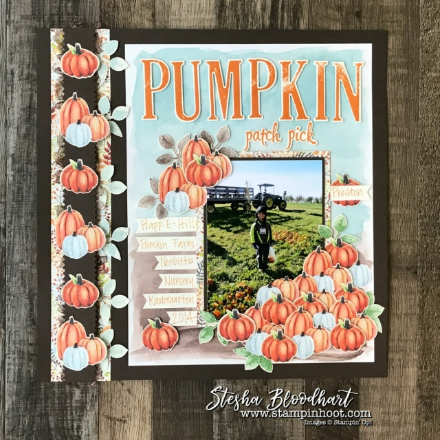 Painted Autumn Designer Series Paper for a Pumpkin Patch Scrapbook Page, details and daily inspiration at Stampin' Hoot! Stesha Bloodhart #scrapbook #scrapbooklayout #paintedautumndsp #fall #pumpkins #stampinup #stampinhoot #papercrafts
