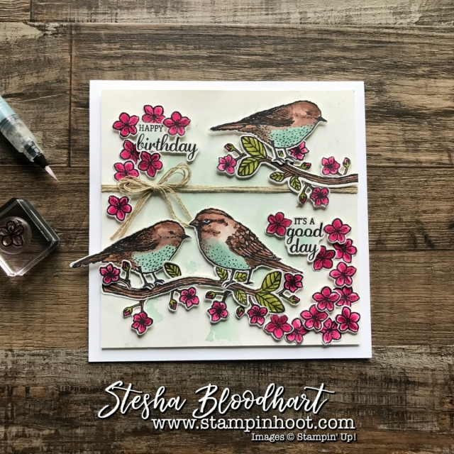 Best Birds Photopolymer Stamp Set and Coordinating Birds & Blooms Thinlits Dies by Stampin' Up! Find Details at Stampin' Hoot! Stesha Bloodhart #watercolor #stampinup #bestbirds #papercrafts #cardmaking #birthdaycard