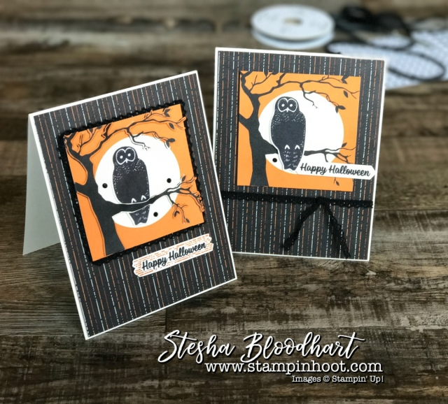 Spooky Cat Photopolymer Bundle and Spooky Night Designer Series Paper by Stampin' Up! for Hoot N' Easy Monday by Stesha Bloodhart, Stampin' Hoot! #spookynight #spookycat #stampinup #stampinhoot #hootneasy #halloweencards #papercrafts #handmadecards #halloween #owls