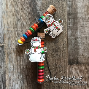 Seasonal Chums Bundle by Stampin' Up! Makes the Perfect Tags for the Treat Tubes from the 2017 Holiday Catalog! See details at stampinhoot.com, Stesha Bloodhart #stampinup #seasonalchums #treattubes #3dthursday #papercrafts #handmade