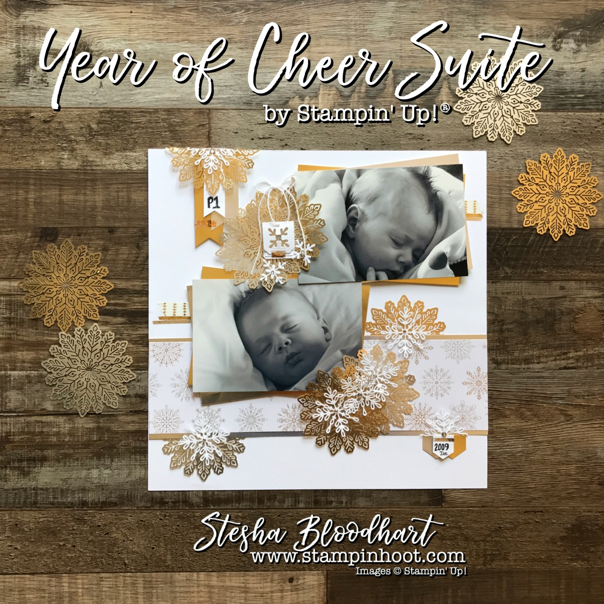 Year of Cheer Suite of Products by Stampin' Up! 2017 Holiday Catalog for my Scrapbook Sunday Blog Feature. Stesha Bloodhart Stampin' Hoot #stampinup #yearofcheer #scrapbook #scrapbooksunday #papercrafts