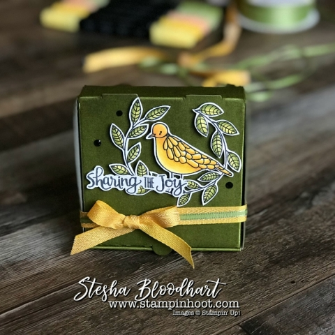 3-D Thursday brings Cheery Chirps, Stampin' Blends and a Mini Pizza Gift Box by Stesha Bloodhart, Stampin' Hoot! #stampinhoot #steshabloodhart