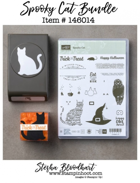 Spooky Cat Photopolymer Bundle by Stampin' Up! Great for all your halloween paper craft needs. Buy online at Stampin' Hoot! #stampinhoot #steshabloodhart