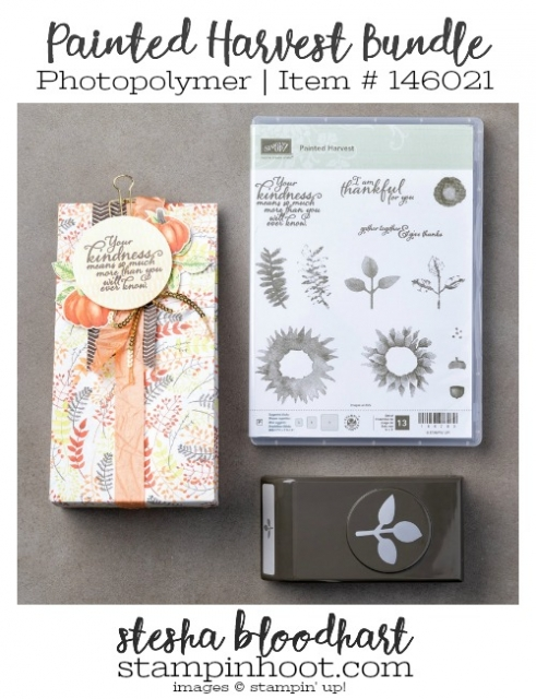 Painted Harvest Photopolymer Bundle by Stampin' Up! Stamp Set and Coordinating Punch #stampinhoot #stampinup #steshabloodhart #paintedharvest