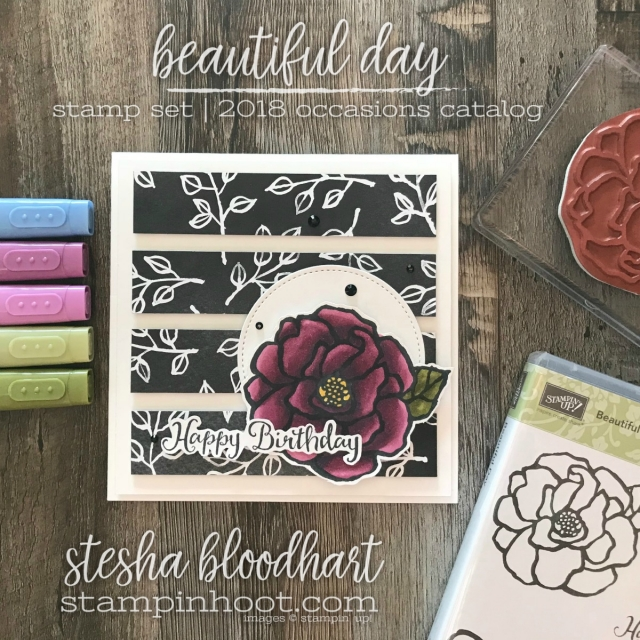 Beautiful Day Stamp Set from 2018 Occasions Catalog for TGIFC137 #tgifc137 Sketch Challenge #steshabloodhart #stampinhoot #beautifulday