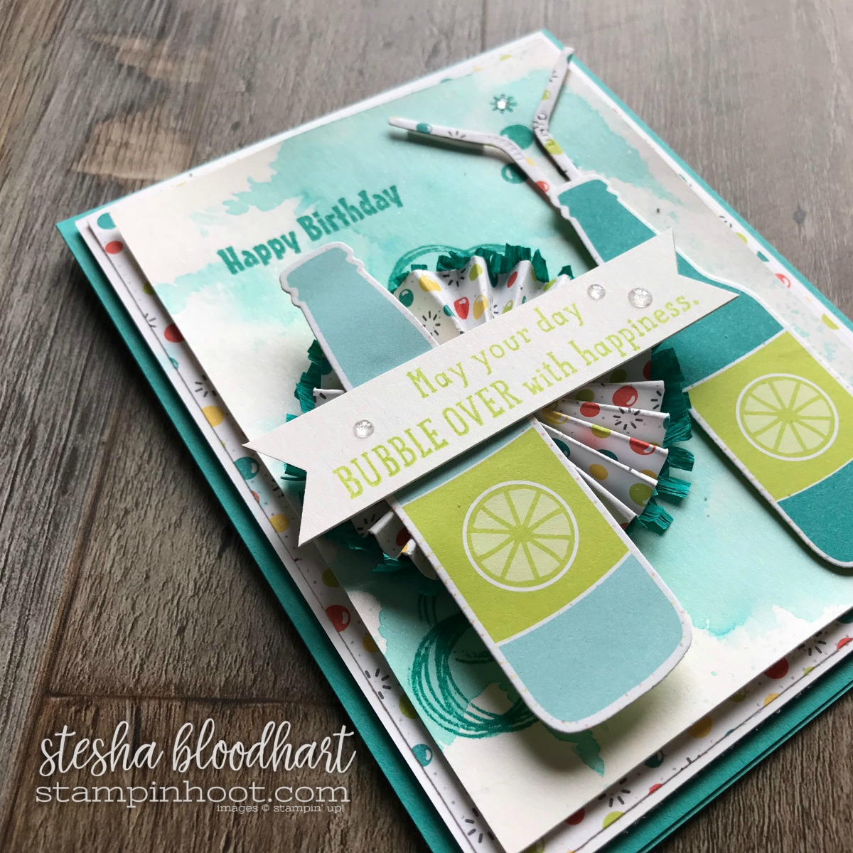 Bubble Over Bundle by Stampin' Up! 2018 Occasions Catalog, Bubbles & Fizz DSP by Stampin' Up! 2018 Sale-a-Bration Catalog Card Created by Stesha Bloodhart, Stampin' Hoot! For the December Birthdays Blog Hop #steshabloodhart #stampinhoot