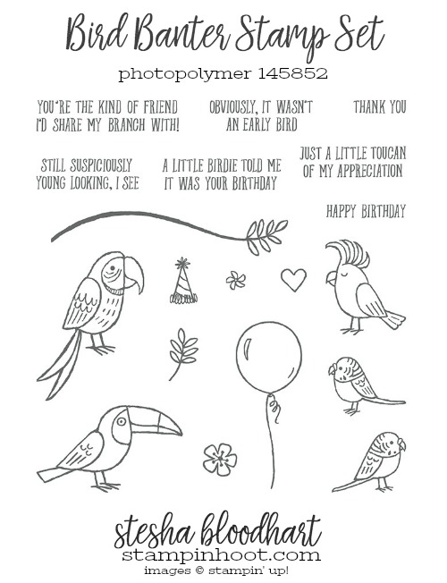 Bird Banter Stamp Set from Stampin' Up! 2018 Occasions Catalog. Order online at Stampin' Hoot! Stesha Bloodhart #stampinhoot #steshabloodhart