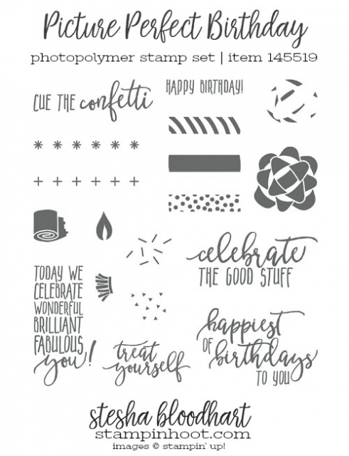 Picture Perfect Birthday Photopolymer Stamp Set by Stampin' Up! Shop Online at Stampin' Hoot! Stesha Bloodhart