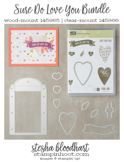 Sure Do Love You Bundle by Stampin' Up! from the 2018 Occasions Catalog #suredoloveyou #steshabloodhart #stampinhoot