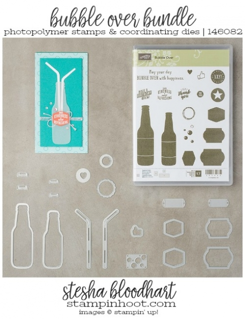 Bubble Over Bundle from Stampin' Up! 2018 Occasions Catalog Order Online at Stampin' Hoot! Stesha Bloodhart