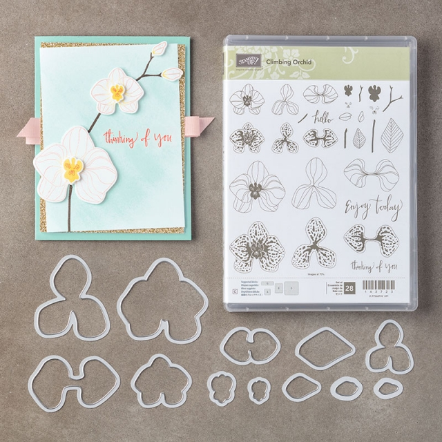 Climbing Orchid Bundle by Stampin' Up! Purchase Online from Stesha Bloodhart, Stampin' Hoot! #steshabloodhart #stampinhoot