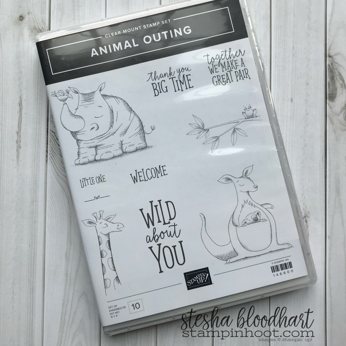 Image result for animal outing stampin up