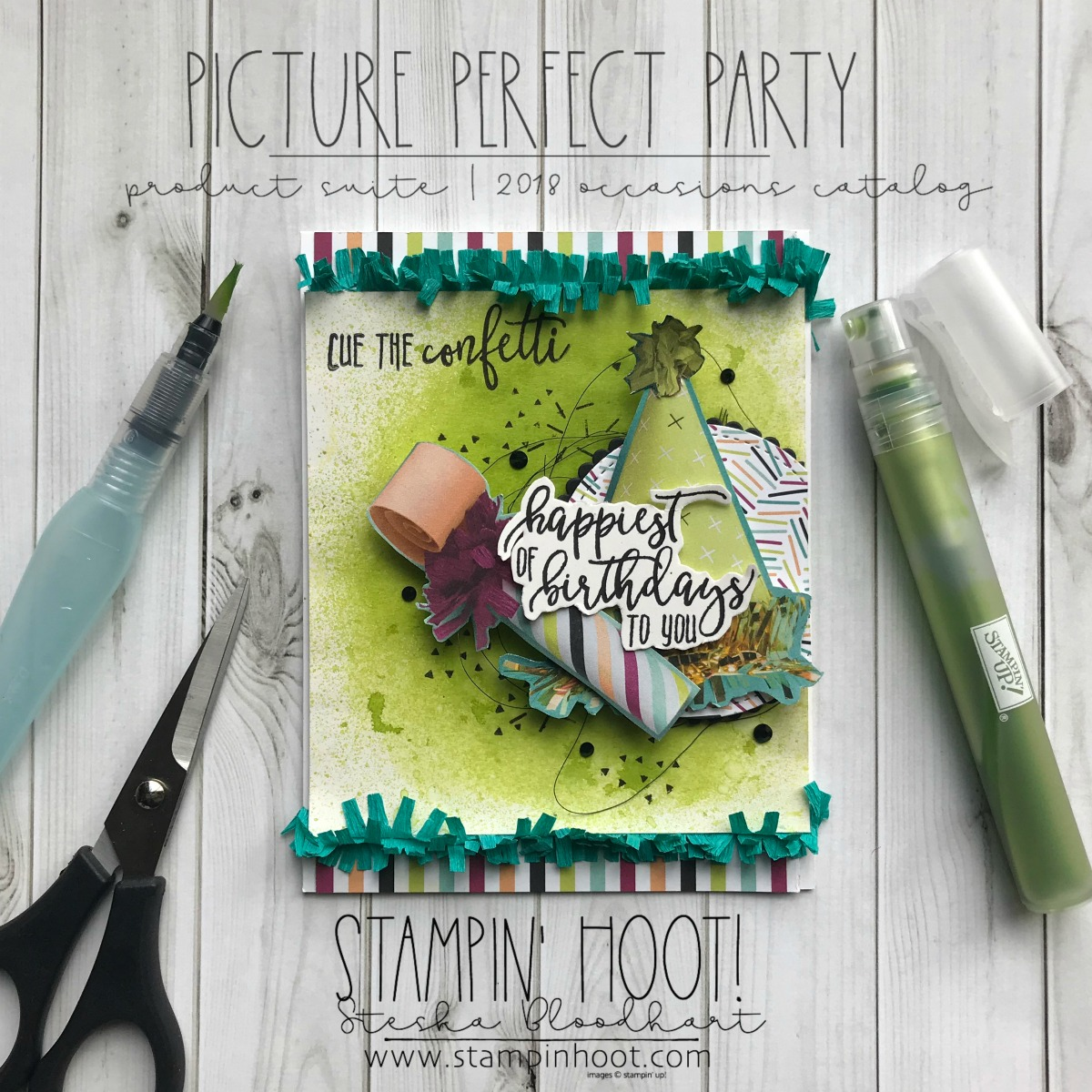 Picture Perfect Party by Stampin' Up! Birthday Card created by Stesha Bloodhart, Stampin' Hoot! Items shown are retiring May 31st, 2018 or While Supplies Last #stampinhoot #steshabloodhart