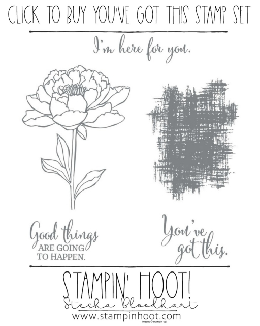 You've Got This Stamp Set, Retiring May 31st, 2018 or While Supplies Last! Order Today! #steshabloodhart #stampinhoot