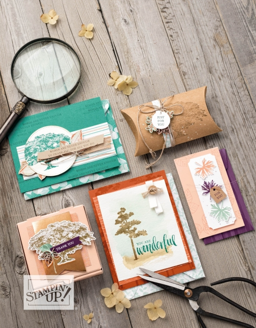 Nature's Poem Creations from Stampin' Up!