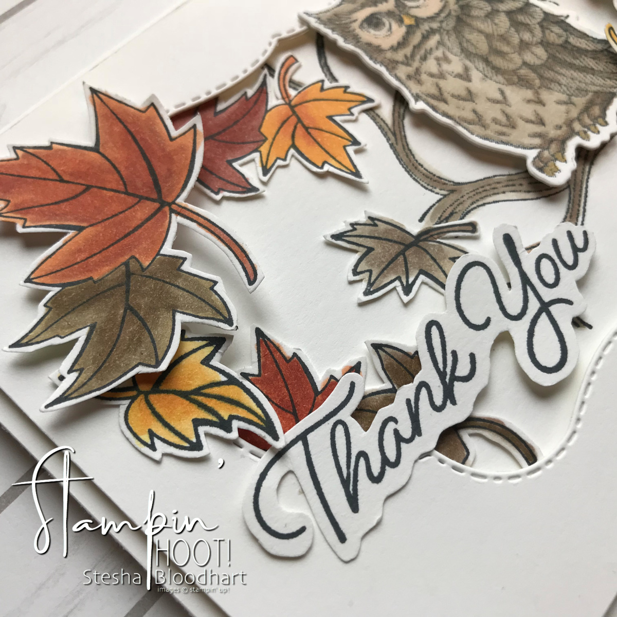 Blended Seasons Bundle & Still Night Bundle Thank You Card by Stesha Bloodhart, Stampin' Hoot! for WWYS183 Challenge #wwys183 #steshabloodhart #stampinhoot