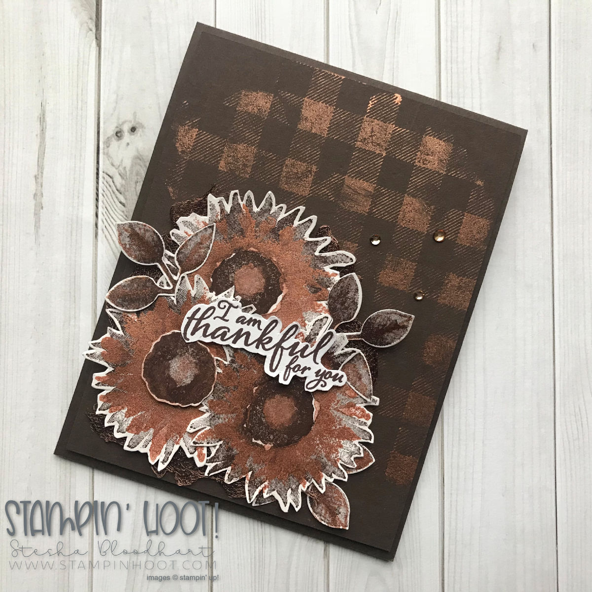 Painted Harvest Stamp Set by Stampin' Up! with Bright Copper Shimmer Paint. Fall card by Stesha Bloodhart, Stampin' Hoot! #steshabloodhart #stampinhoot