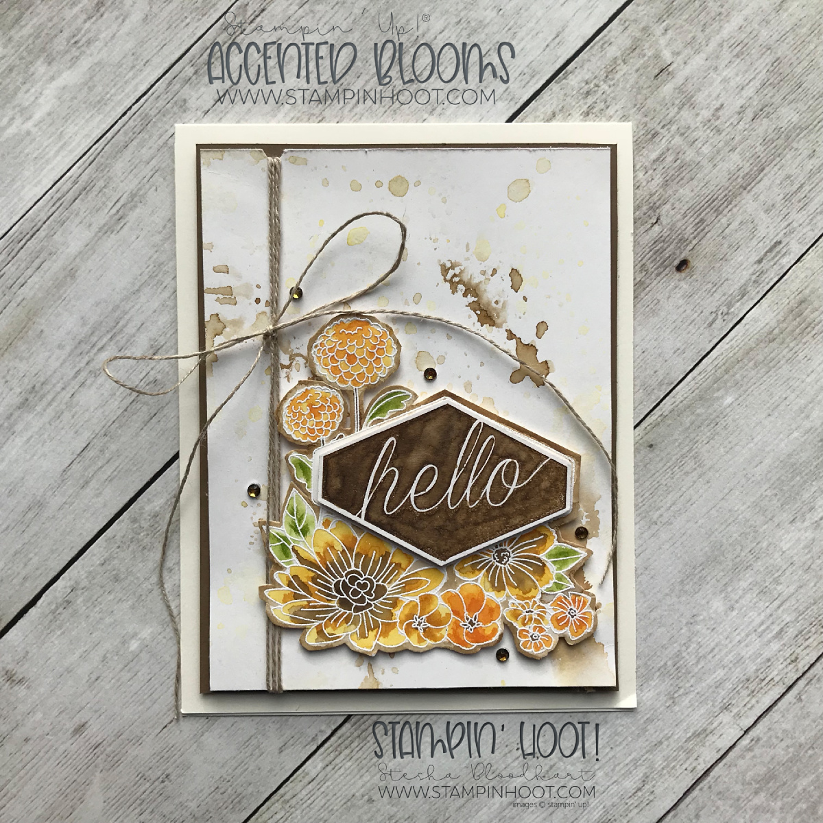 Accented Blooms Stamp Set by Stampin' Up! Hello Card by Stesha Bloodhart, Stampin' Hoot! #steshabloodhart #stampinhoot
