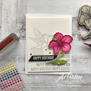 Humming Along and Itty Bitty Birthdays Cling Stamp Sets by Stampin