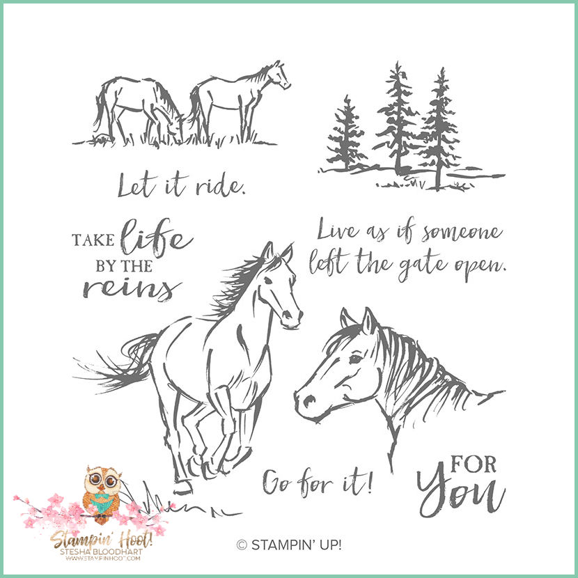 148765 Let It Ride Cling Stamp by Stampin' Up!