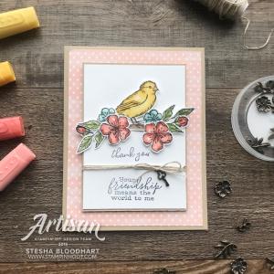 Sneak Peek Free As A Bird Stamp Set by Stampin