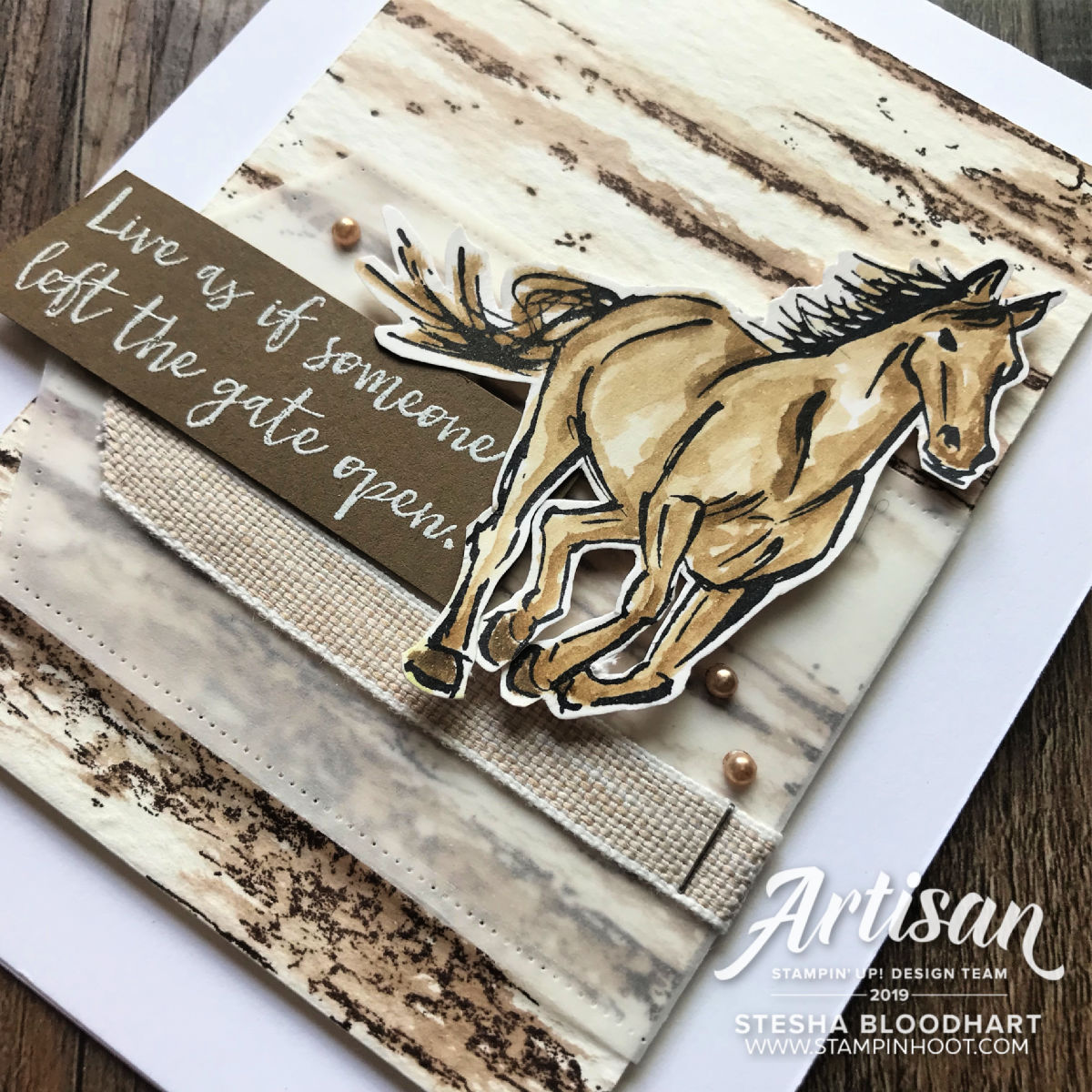 LET IT RIDE & BIRCH BACKGROUND BY STAMPIN' UP! Cards by Stesha Bloodhart, Stampin' Hoot!