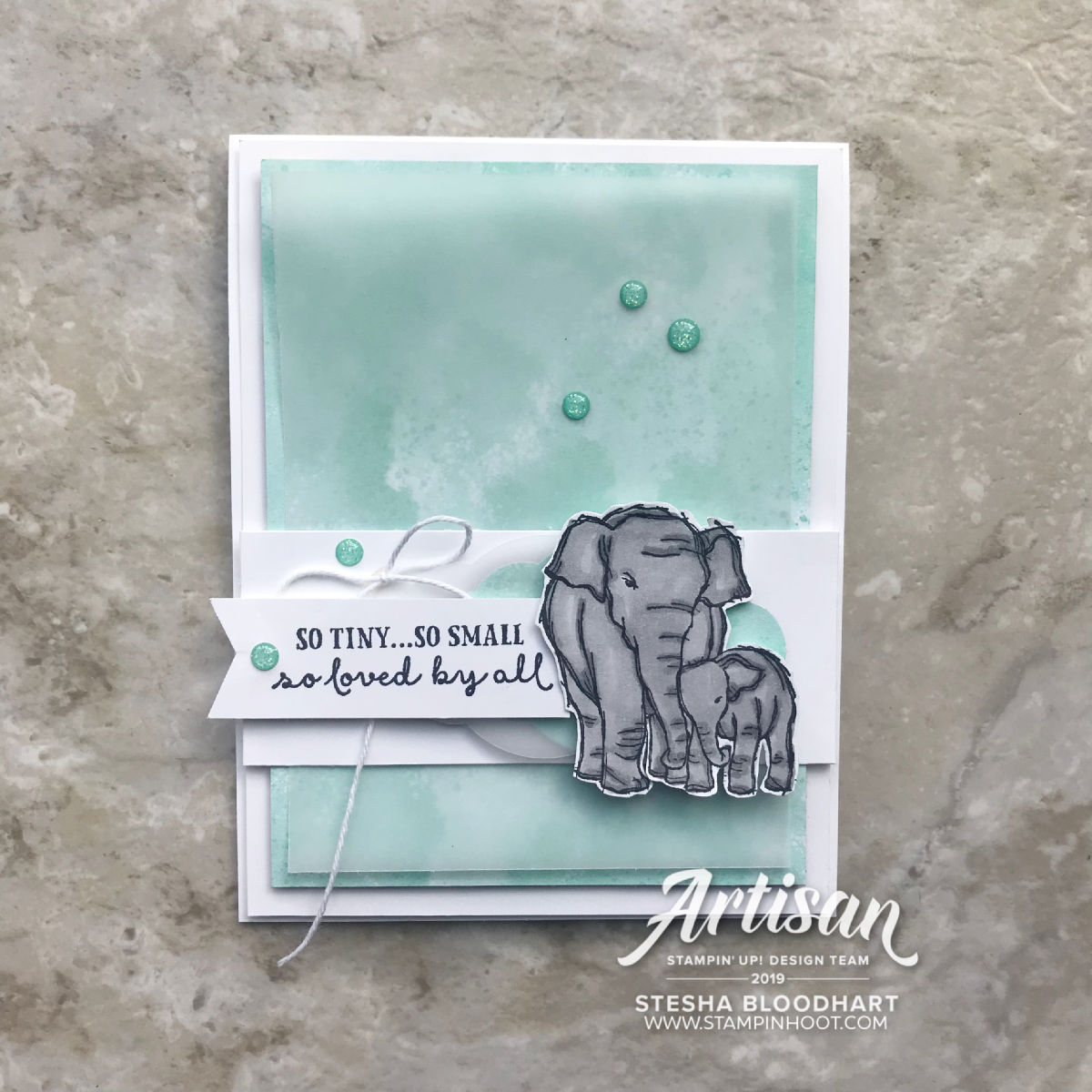 Wildly Happy Stamp Set by Stampin' Up! Baby Card by Stesha Bloodhart, Stampin' Hoot!