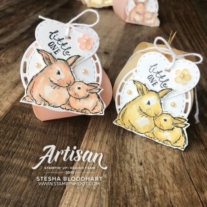 Mini Curvy Keepsake Baby Shower Treats by Stesha Bloodhart, Stampin