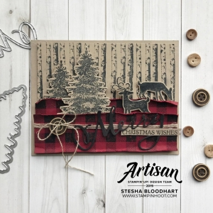Winter Woods and Buffalo Check Stamp Sets by Stampin