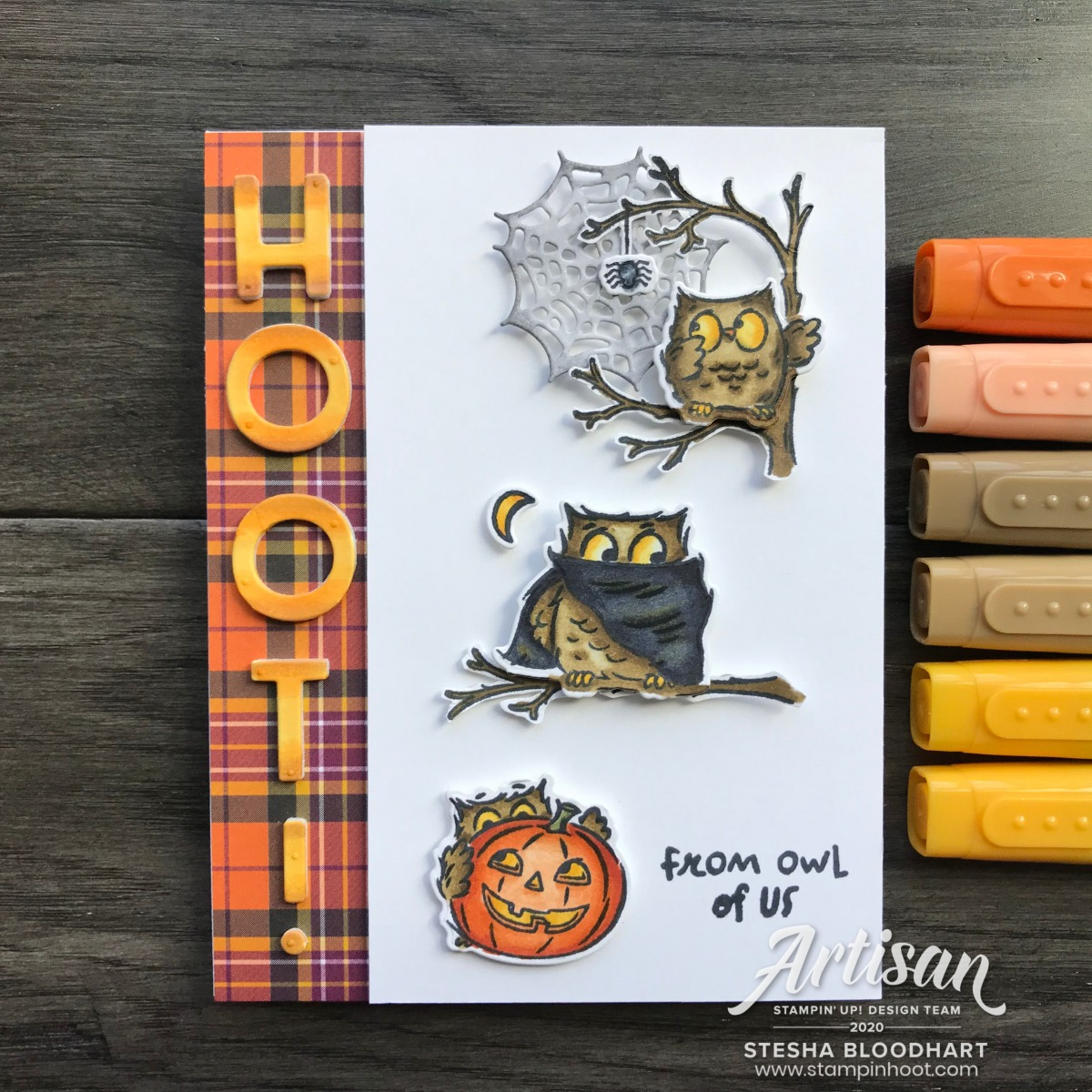 Have a Hoot Bundle from Stampin' Up! Card created by Stesha Bloodhart, Stampin' Hoot!
