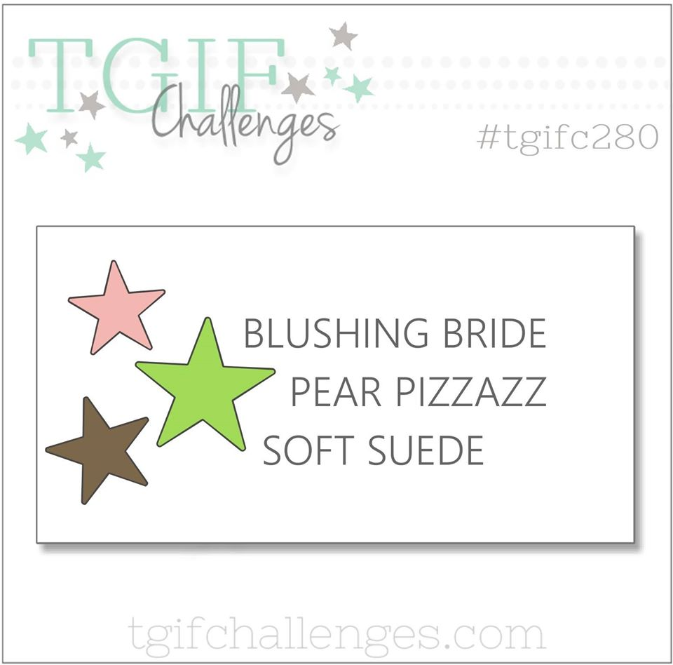 TGIFC280 Color Challenge Blushing Bride, Pear Pizzaz, Soft Suede
