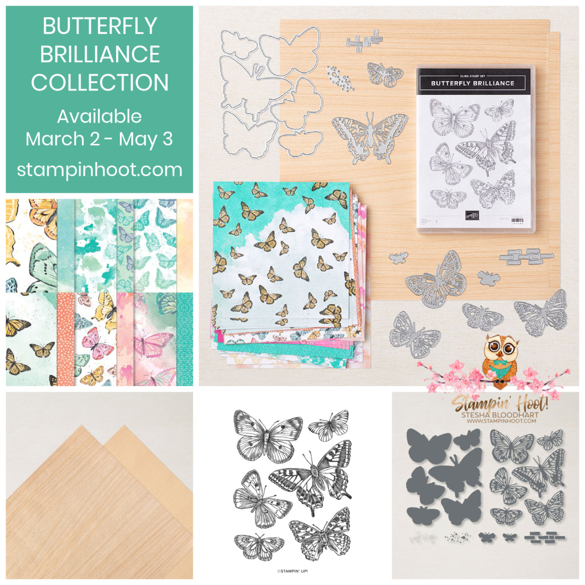 Butterfly Brilliance Collection 159408 $71.25 from Stampin' Up! Purchase from Stesha Bloodhart, Stampin' Hoot!