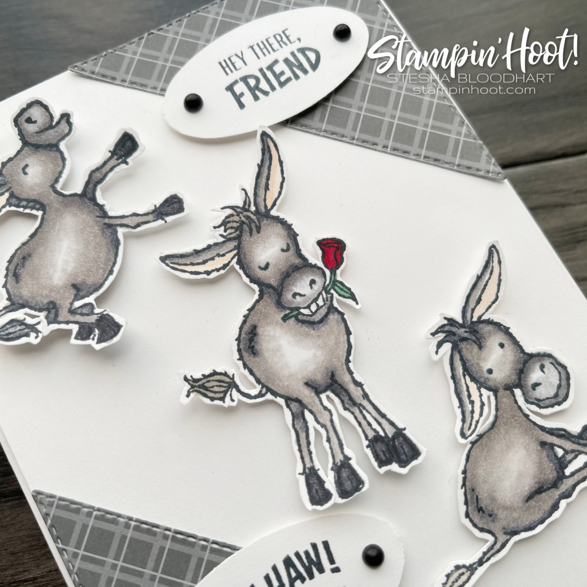Darling Donkey Stamp Set by Stampin' Up! Free with $50 Purchase - Order Online with Stesha Bloodhart, Stampin' Hoot! #tgifc304