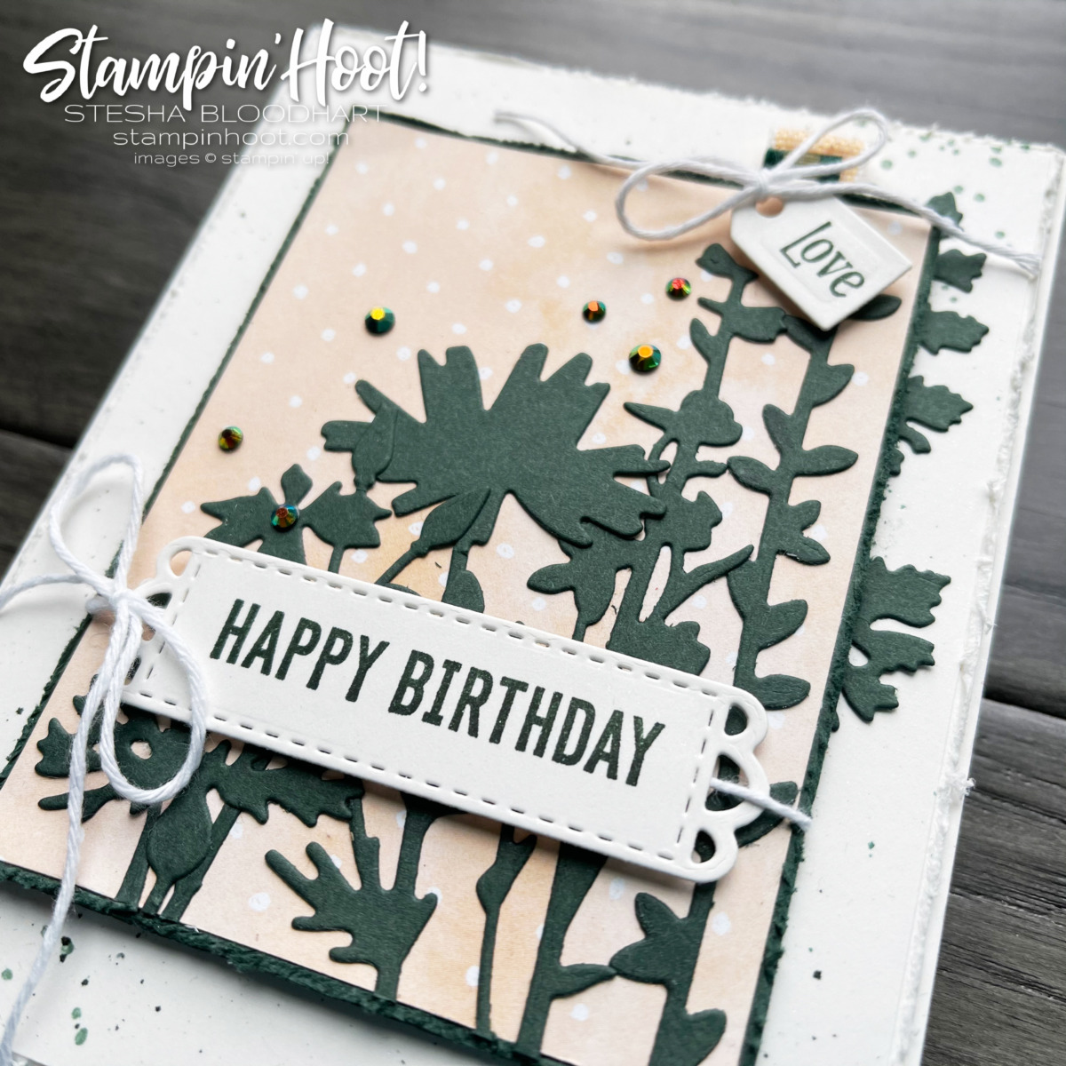Quiet Meadow Bundle & Hand-Penned by Stampin' Up! Sneak Peek Birthday Card by Stesha Bloodhart, Stampin' Hoot!