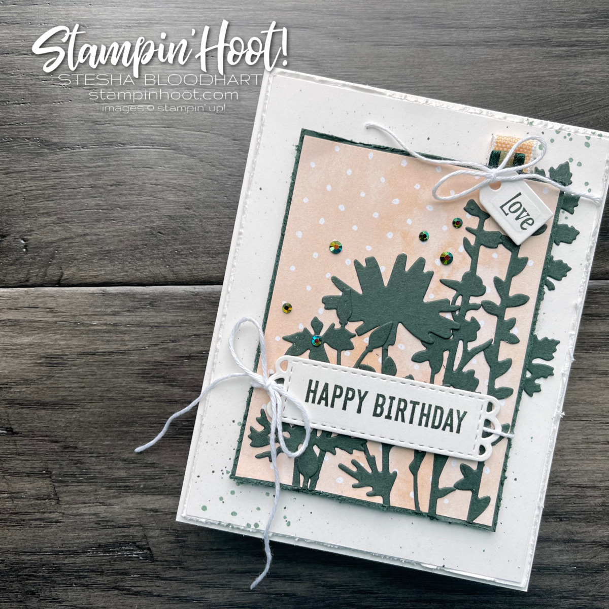 Quiet Meadow Bundle and Hand-Penned by Stampin' Up! Sneak Peek Happy Birthday Card by Stesha Bloodhart, Stampin' Hoot!