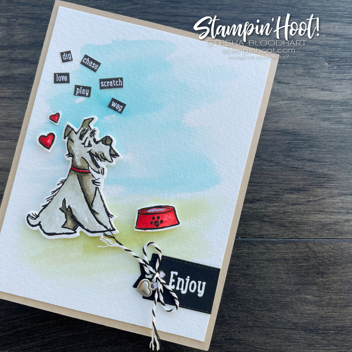 #tgifc313 Dog Cat Theme Challenge Pampered Pets by Stampin' Up! Card created by Stesha Bloodhart, Stampin' Hoot! 2