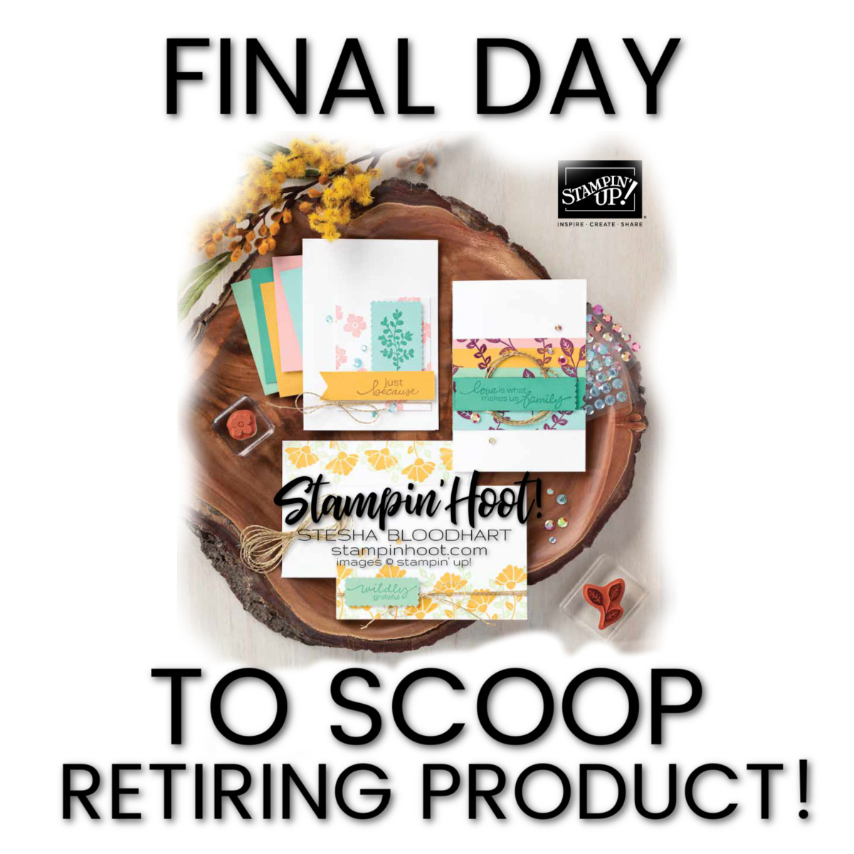 Final day Retiring Items 2020-2021 Annual Catalog from Stampin' Up!
