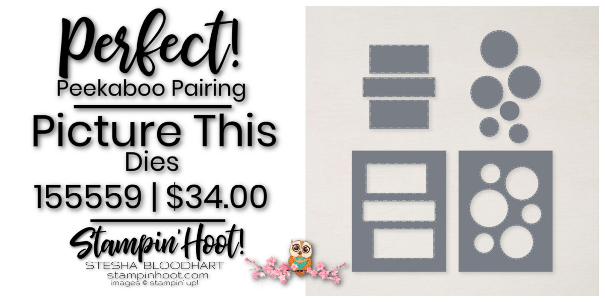 Picture This Dies- Page 164 -155559 $34.00 by Stampin' Up! Order Online with Stesha Bloodhart, Stampin' Hoot!