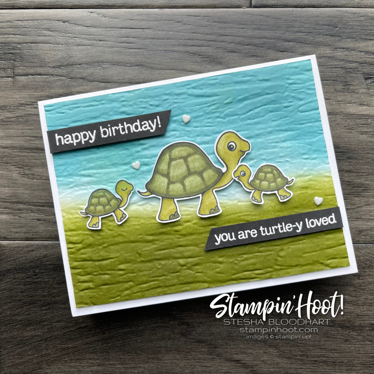 Create this card using Turtle Friends Bundle from Stampin Up Card by Stesha Bloodhart Stampin Hoot #tgifc320